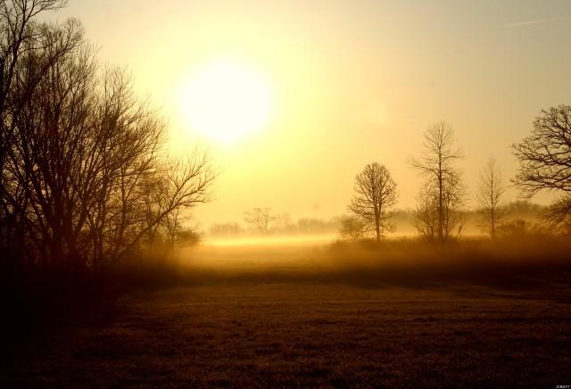 dawnsearlylight